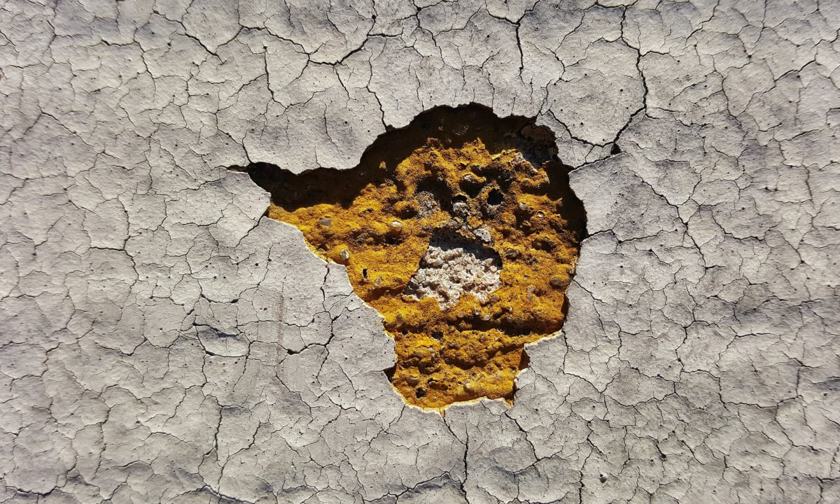 image of cracking paint with flaking loss showing ground layers